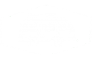 Dünenkerl Camping Bulli T4 weiß